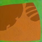schaduwen gatenplant 1 2010