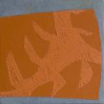 schaduwen gatenplant 3 2010