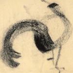 ogelstudie fazant