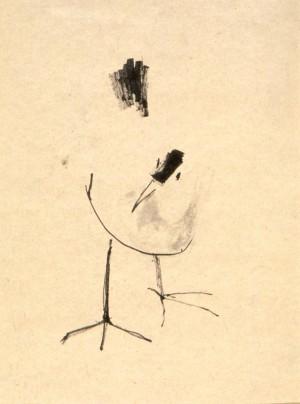 vogelstudie waterhoen